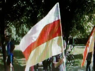 Sventolio-di-bandiera-della-Napolitania.jpg